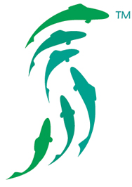 Sustainable Seafood logo